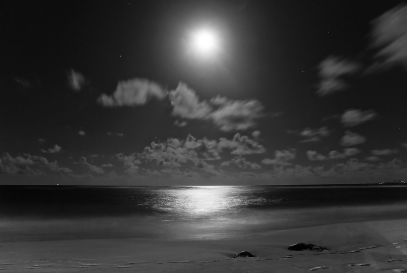 Beach Night Moon